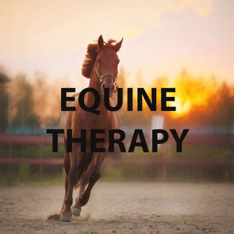 equine-therapy-copy